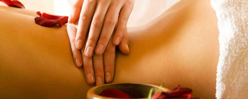 Massage Therapy Fort Mill SC – Willow Tree Massage Therapy Grand Opening